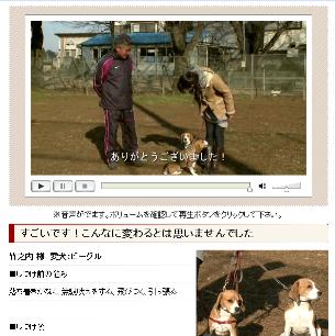 犬のしつけ藤井04.png